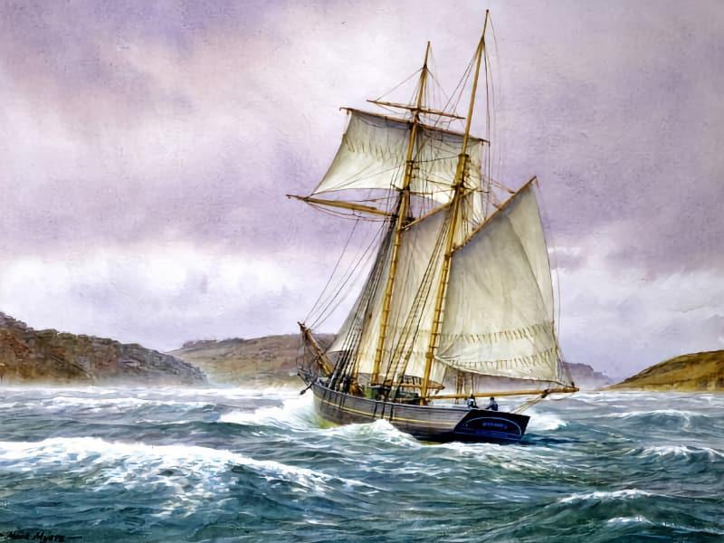 Salcombe: Schooner Port by Roger Barrett